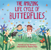 The Incredible Life Cycle Of A Butterfly