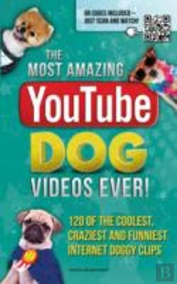 Bertrand.pt - The Most Amazing Youtube Dog Videos Ever!