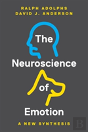 The Neuroscience Of Emotion