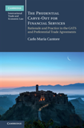 The Prudential Carve-Out For Financial Services