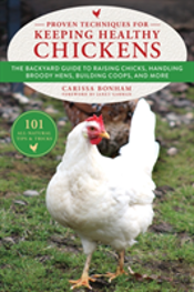 Tips & Tricks For Keeping Chickens