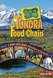 Tundra Food Chain
