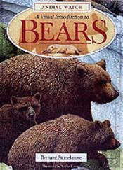 Visual Introduction To Bears