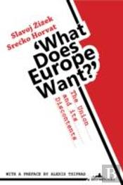What Does Europe Want?
