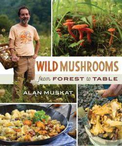 Bertrand.pt - Wild Mushrooms