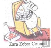 Zara Zebra Counts